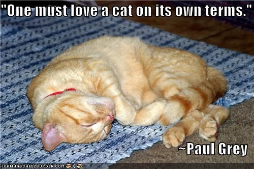 """One must love a cat on its own terms.""  ~Paul Grey"