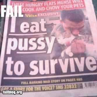 Cats,failboat,food,headlines,hungry,pets,Probably bad News,pussy,survival