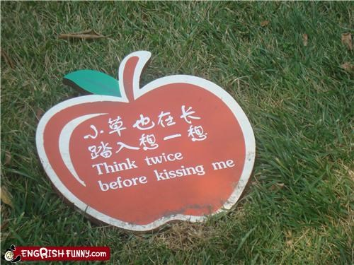 apple shapes kissing signs warnings