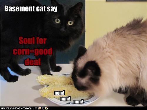 Soul for corn=good deal Basement cat say nom! nom! nom!