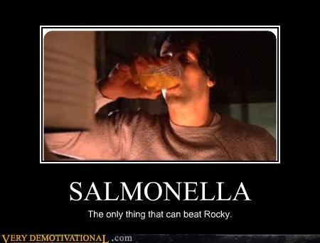 SALMONELLA The only thing that can beat Rocky.