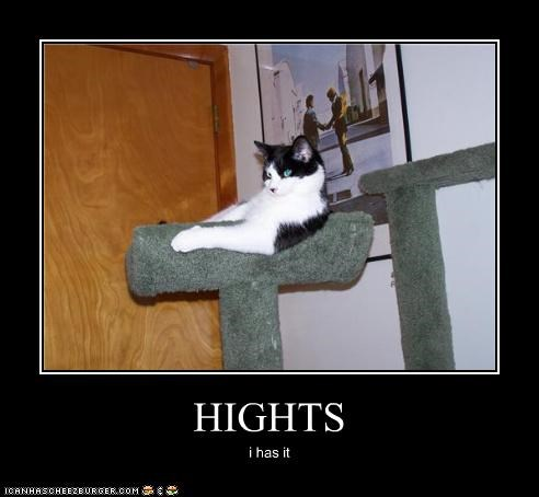 HIGHTS
