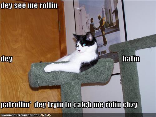 dey see me rollin dey                                                                        hatin                  patrollin'  dey tryin to catch me ridin chzy