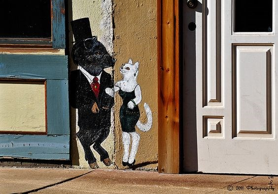 cat graffiti around the world
