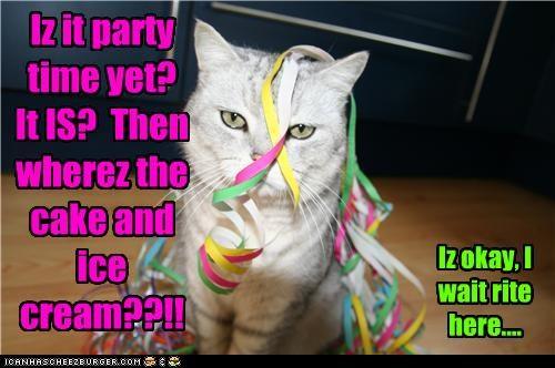 Iz it party time yet? It IS? Then wherez the cake and ice cream??!! Iz okay, I wait rite here....