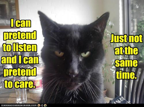 caption,caring,cat,listening,multitasking fail,pretending