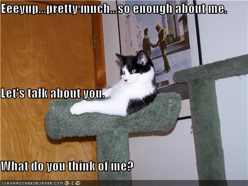 Eeeyup...pretty much...so enough about me. Let's talk about you. What do you think of me?