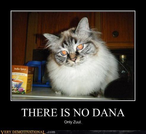 cat eyes Ghostbusters - 3906406400