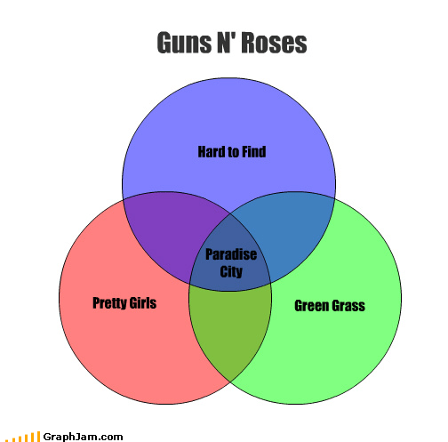 axl rose,Bandana Addiction,guns n roses,Hair Plugs,paradise city,venn diagram