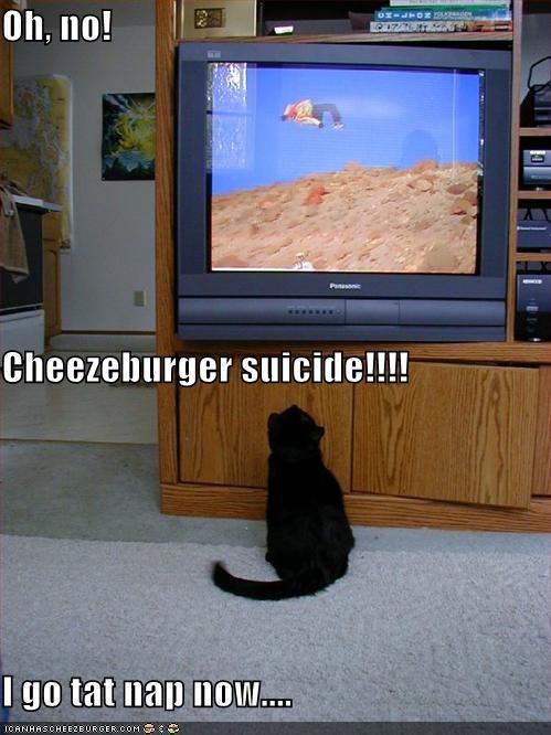 Cheezburger Image 3906853888
