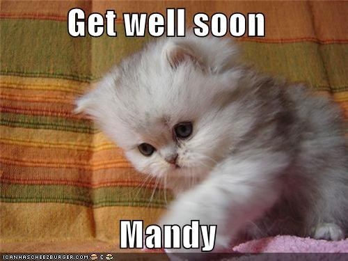 Get well soon Mandy - Cheezburger - Funny Memes | Funny Pictures