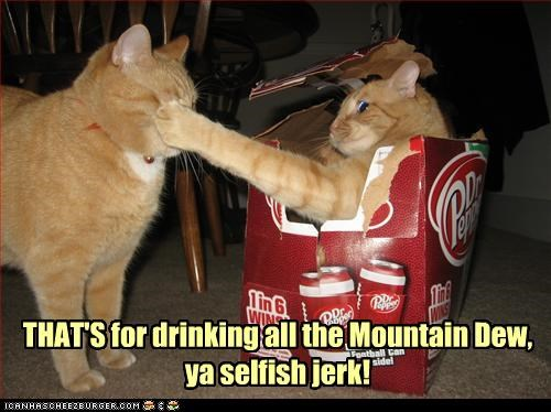 THAT'S for drinking all the Mountain Dew, ya selfish jerk!