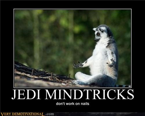 animals Jedi magic Sad star wars - 3911475712