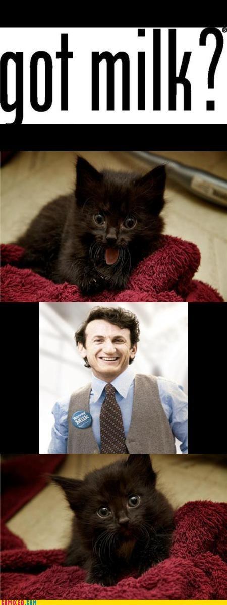 animals celebutard history milk movies puns Sean Penn - 3912226816