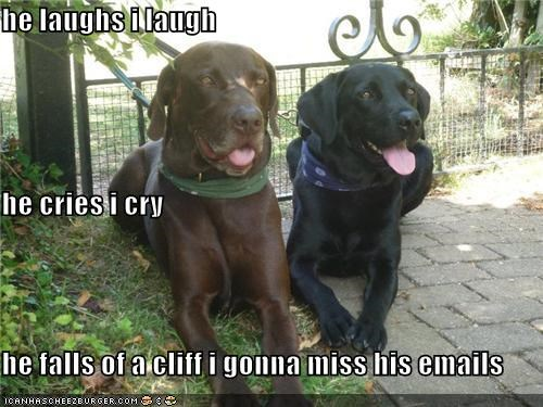 crying friendship laughing mimicking missing - 3912692736