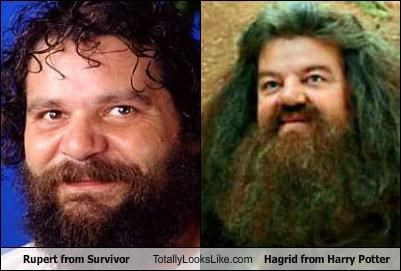 Hagrid Harry Potter rupert survivor