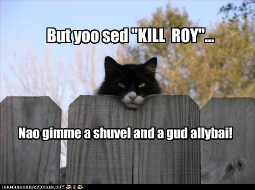 alibi caption cat kill roy misinterpretation shovel - 3915415040