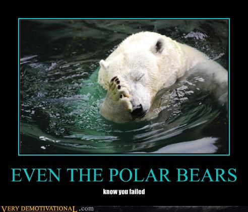 animals face palm FAIL global warming hilarious polar bears - 3916661760