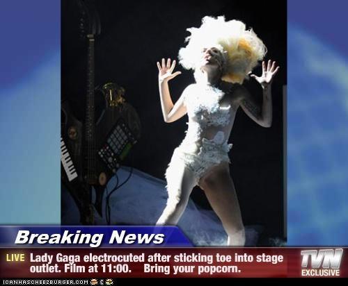 celeb funny lady gaga Music - 3917207296