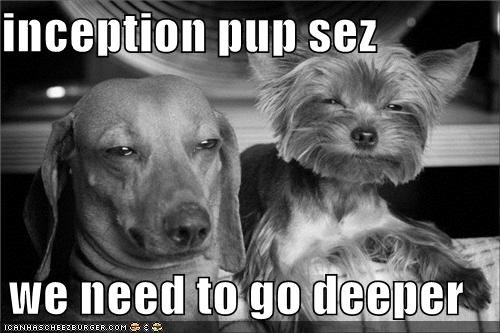 black and white,dachshund,go deeper,Inception,meme,memedogs,terrier