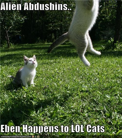 abductions alien caption Cats tractor beam