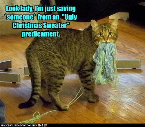 caption,cat,christmas sweater,predicament,preemption,unraveling,yarn