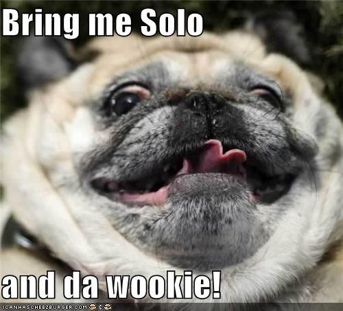 derp face,hans solo,jaba,pug,star wars,wookie