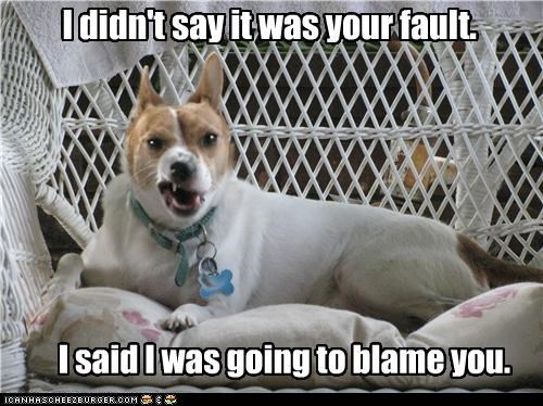 I didn't say it was your fault. I said I was going to blame you.