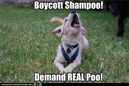 Boycott Shampoo! Demand REAL Poo!