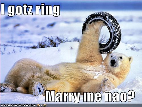 I gotz ring  Marry me nao?