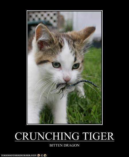 CRUNCHING TIGER BITTEN DRAGON