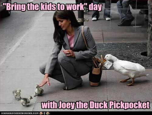 bring the kids to work day caption duck ducklings money pickpocket stealing - 3929098496