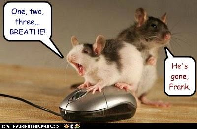 caption Death mice mouse pun resuscitation - 3929426432