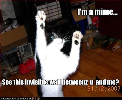 I'm a mime... See this invisible wall betweenz u and me?