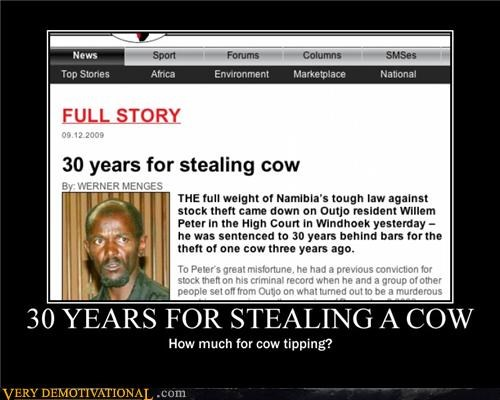 30 YEARS FOR STEALING A COW