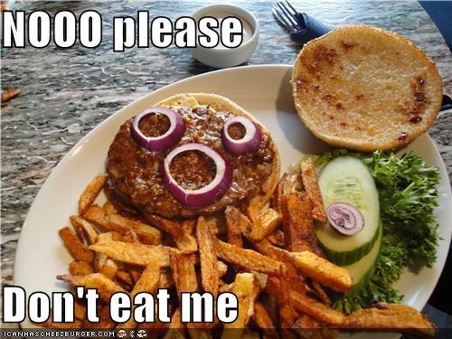 Cheezburger Image 3931507968