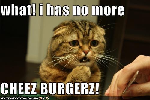 Cheezburger Image 3931524608