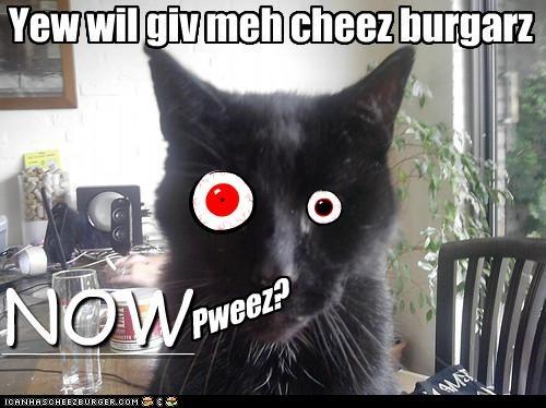Cheezburger Image 3931638016