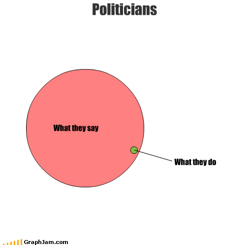 What they say What they do Politicians