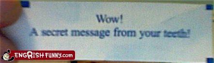 fortune fortune cookie message secret - 3933164032