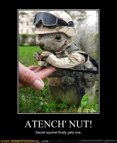 ATENCH' NUT! Secret squirrel finally gets one.