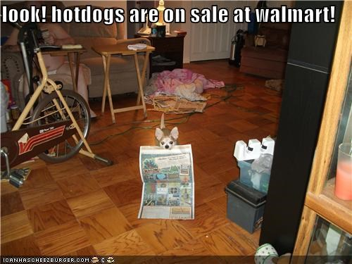 chihuahua,coupons,hotdogs,newspaper,on sale,sales,Walmart