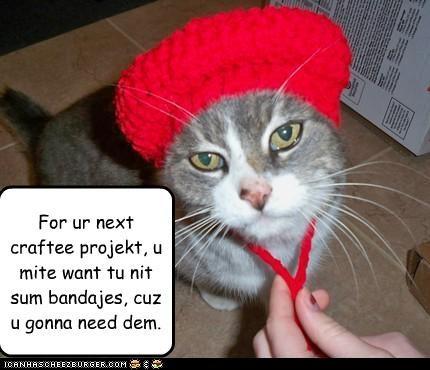 annoyed bandages caption cat hat knitting threat warning - 3936104192