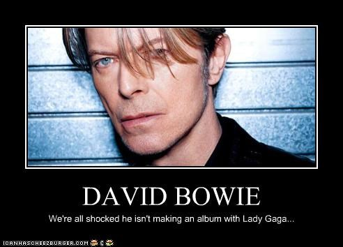 DAVID BOWIE We're all shocked he isn't making an album with Lady Gaga...