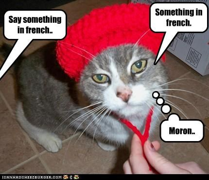 Say something in french.. Something in french. Moron..