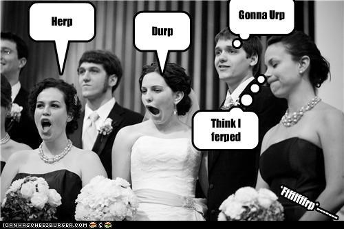 bridal party cauht in the derp derp photos wedding album wedding derps