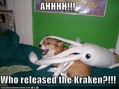 accusations,attacked,corgi,kraken,screaming,squid,stuffed animal,who did it