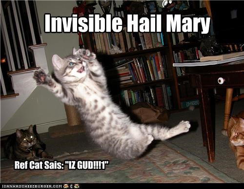 "Invisible Hail Mary Ref Cat Sais: ""IZ GUD!!!1"""