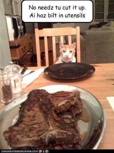 built in,caption,captioned,cat,cutting,meat,no need,steak,utensils