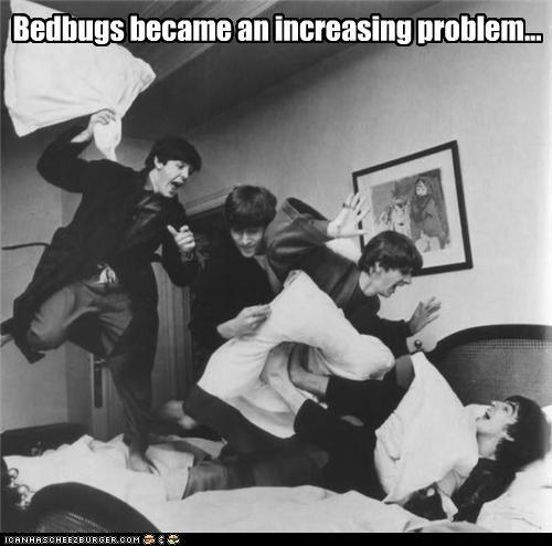 Bedbugs became an increasing problem...